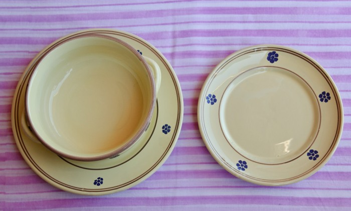 hand painted country chic ceramic dinner set